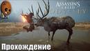 Assassin's Creed Odyssey - Прохождение 93➤Керинейская лань. Язык древних. В погоне за призраками.