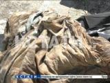 Ритуальное захоронение или криминальный труп - мумия обнаружена в коллекторе