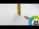 На Екатеринбург обрушился первый снегопад - МИР 24