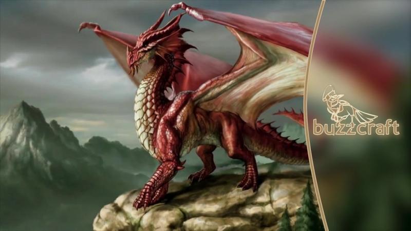 Интересные факты и истории про драконов