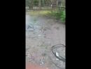 Video-2d01be6610b0fcc96255e0ae4f905e8b-V.mp4.mp4