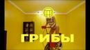 Грибы — Велик (AstroFox Remix) (Remix 2017)