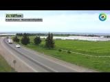 Шамкир пристанище азербайджанских немцев