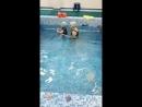 Плавание малышей в детском клубе Я Новокузнецк
