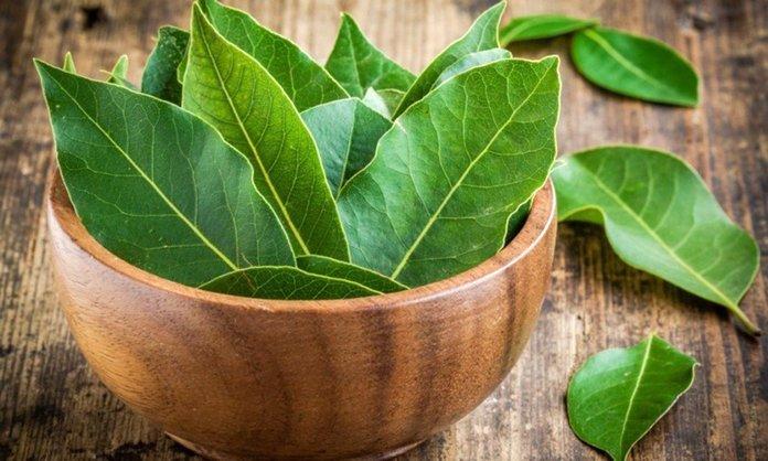 Лучшее травяное лечение диабета