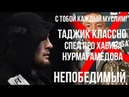 Таджик классно спел про Хабиба   Непобедимый орел