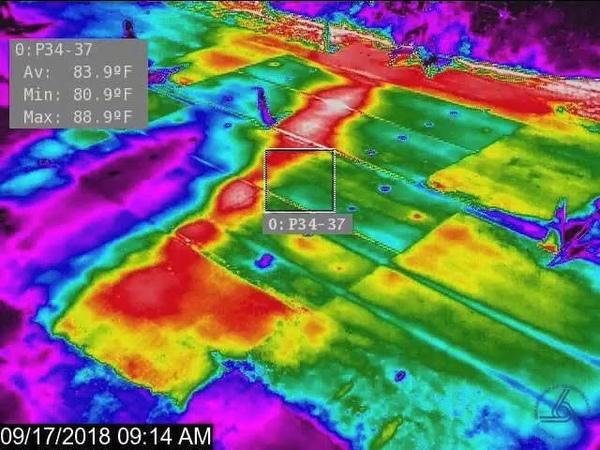 Infrared time-lapse Sept. 13-20, 2018, on Pahoa-Kalapana Road (Route 130)