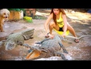 🐊🐊My Cute Sister Washing Swim Freshwater Crocodile How to Start Cleaning A Crocodile Basic🐊
