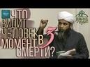 ТВОЙ ТЕЛОХРАНИТЕЛЬ В МОГИЛЕ - Хасан Али
