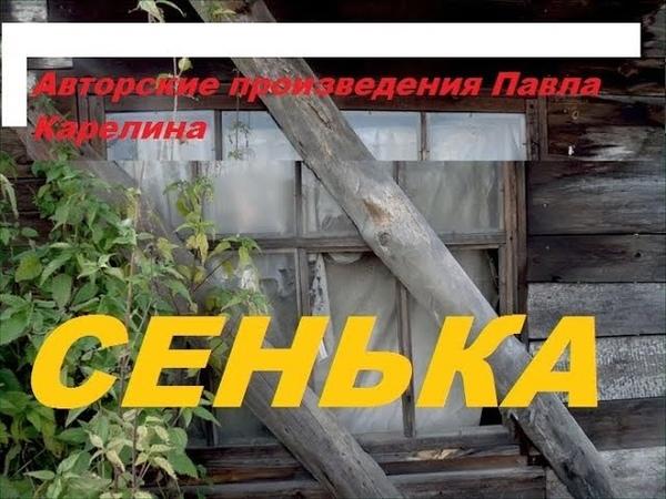 Авторские произведения Павла Карелина Сенька