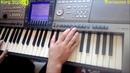 Александр Маршал-Белый пепел на синтезаторе Yamaha psr1500