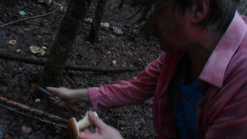 Первый мой белый белый гриб. В Устье-Кубенском районе у деда Играя. ВидеоМИГ