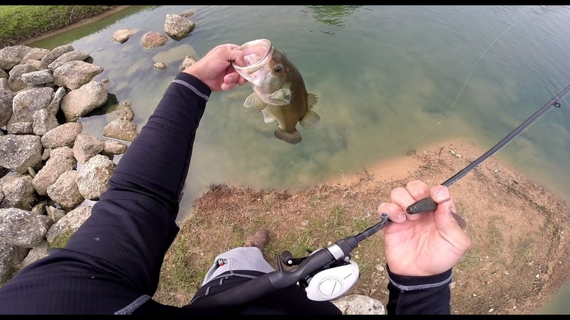 How to catch spawning bedding bass
