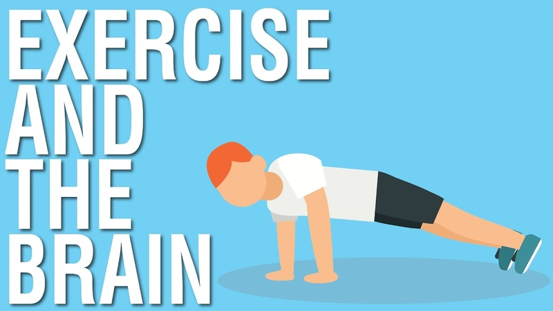 EXERCISE AND THE BRAIN SPARK BY JOHN RATEY ANIMATED BOOK SUMMARY