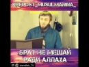 Абу Умар Саситлинский – Брат не мешай ради Аллаhа