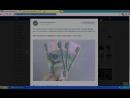 Итоги конкурса Цветы оптом| Оформителям и флористам|Школа от 2.05.18