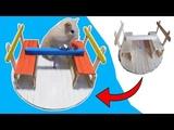 DIY Hamster carousel. Popsicle stick hamster toys