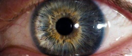 у всех людей на земле уникальные глаза. каждый — это вселенная. «я — начало»