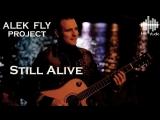 ALEK FLY project - Still Alive (LIVE)