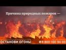 Видеоролик федеральной информационной противопожарной кампании Останови огонь