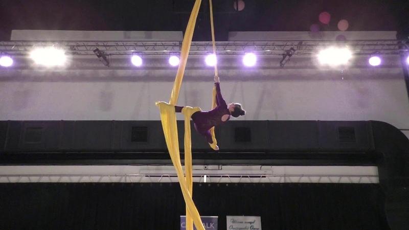 Яна Береславская Catwalk Dance Fest pole dance aerial 30 04 18