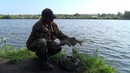 Рыбалка. Донки - кормушки. Бонус в глухолетье