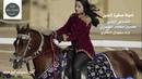 Лошадь танцует под арабскую музыку ахринет