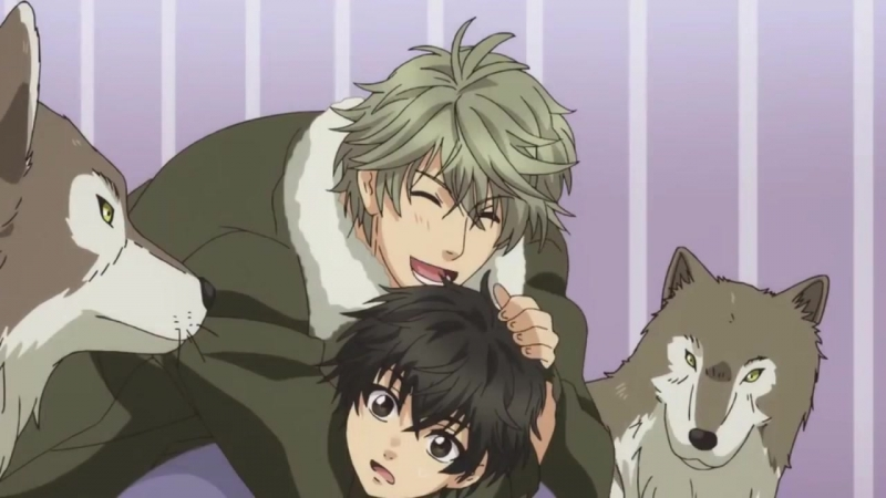 Super Lovers - Please dont go