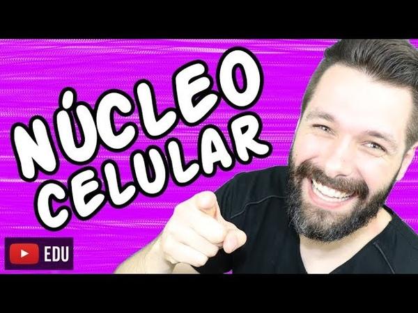 NÚCLEO CELULAR - Aula   Biologia com Samuel Cunha