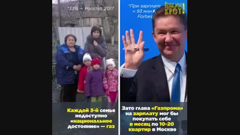 Почти каждая 4-я семья в России живёт без туалета в доме, у каждой 5-й нет воды