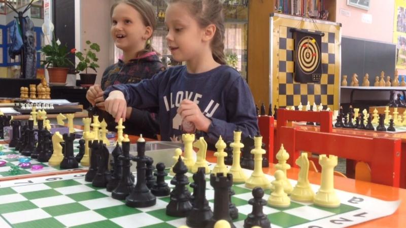Шахматы Омск, обучаем играя!