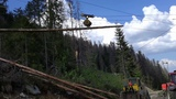 Logging and Forest-Cable Car to Approach in the Woods