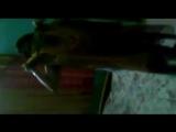 Sopna Vabi from Sylhet, Free Indian Porn Video 6c- xHamster