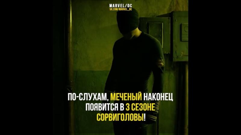 Сорвиголова
