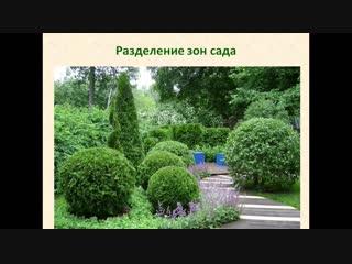 Марафон по кустарникам_день 4