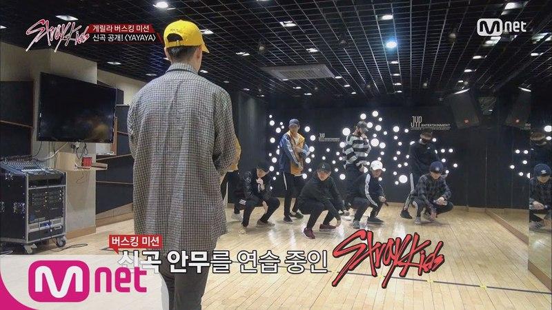 Stray Kids [8회] 잘하고 싶다.. 스키즈의 혹독한 ′YAYAYA′ 연습기 171205 EP.8