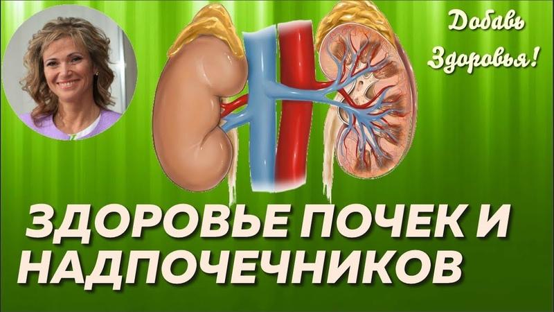 Здоровье Почек и Надпочечников. Симптомы. Питание при нарушении