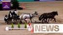 High risk = high reward | News | FEI Driving World Cup™ Stockholm