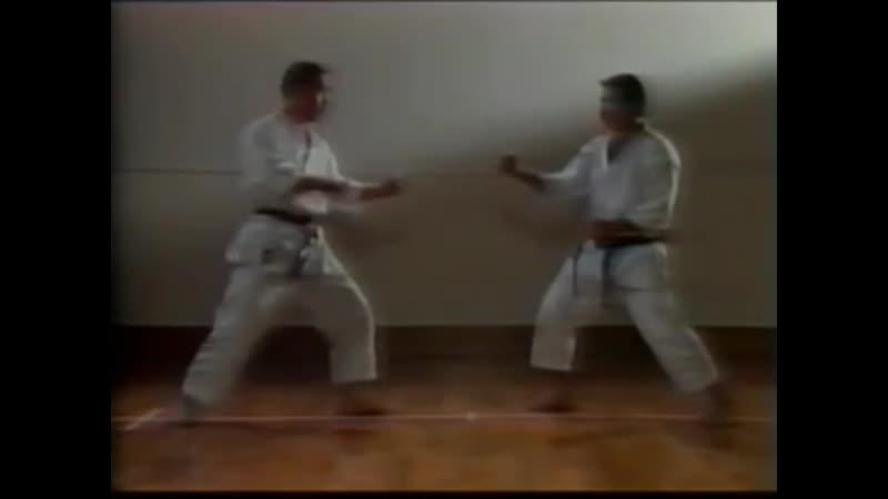 Masahiko Tanaka - Shotokan Karate (Mawashi Geri Jodan)