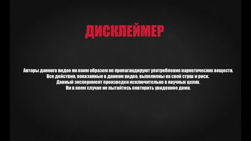 Нелли курит Травку Drugslab на русском от Yap Kiwi