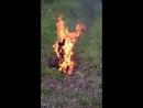 Сожжение чучела Бограта