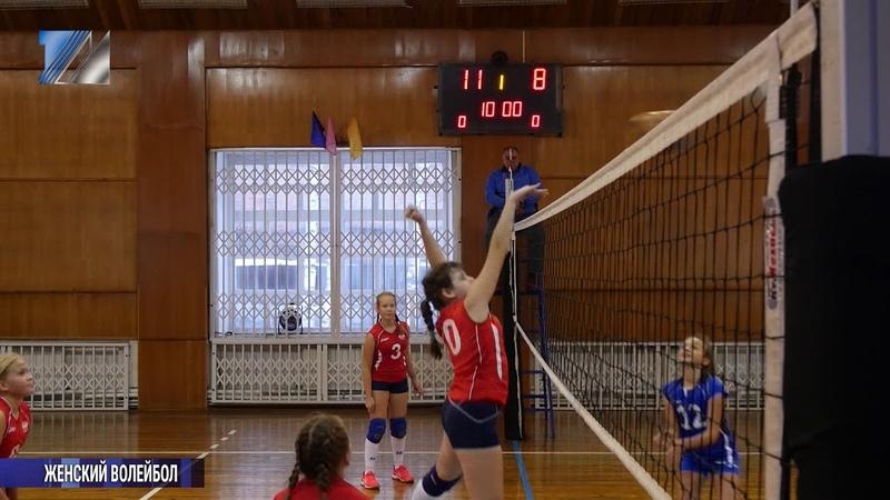 Стартовал областной турнир по волейболу