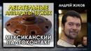 Андрей Жуков / Летательные аппараты чужих / НЛО / Мексиканский палеоконтакт / Лекция / Protohistory