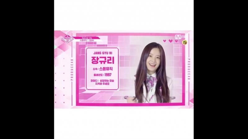 PRODUCE48 [Special] stone Music - Чан Гюри. Голосуй за свою девушку!