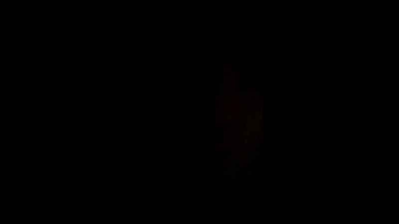 Дулат Султан — Live