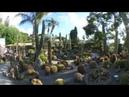 I Giardini Ravino Ischia