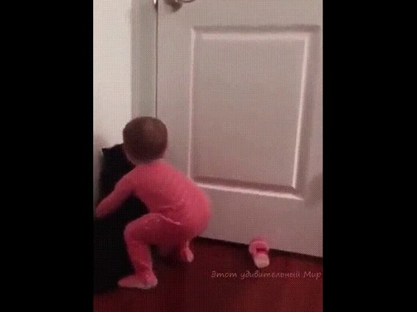 Кот помог открыть дверь. Девочка не достаёт до ручки.