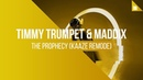 Timmy Trumpet Maddix - The Prophecy (KAAZE Remode)