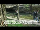 Чиновники почистили парки и набережные во время всекрымского субботника