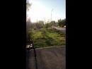 г. Бердск. Парк. Раннее утро. 07.06.2018.